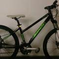 BIANCHI(ビアンキ) ATTIVO WOMENの自転車買取情報