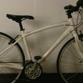 SPECIALIZED(スペシャライズド) SIRRUS(シラス)の自転車買取情報
